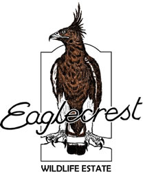 Eaglecrest estate