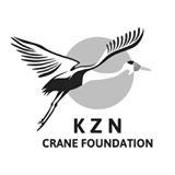 kzn-crane-foundation